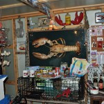 Inside The Lobstah Shack, Lots of Accessories Available