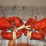Two Scrumptious Lobstahs, Enjoy!