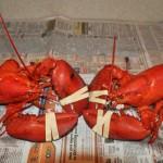 Two Scrumptious Lobstahs, Enjoy!